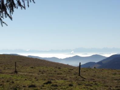 Aus dem Nebel der Niederung ragt die Abgaswolke eines Kraftwerks