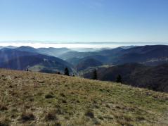 Im Hintergrund die Schweizer Alpen, dazwischen Nebel in den Niederungen