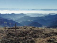 Blick über die angrenzenden Schwarzwaldgipfel Richtung Vogesen