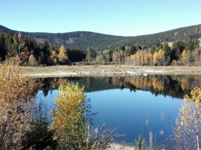 Das Ende des Schluchsees auf der Ostseite