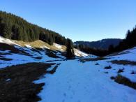 Ab 1.100 Meter Höhe ü.N.N. laufen wir durch den Schnee
