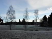 Noch hat die Sonne das Eis auf den Bäumen nicht aufgelöst