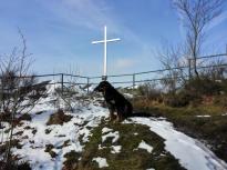 Gipfelkreuz an der Ehrensteinsley