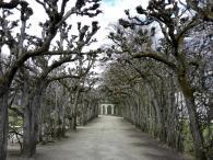Laubengang am Kanalgarten