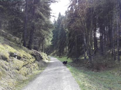 Weg hinauf zum Hochplateau