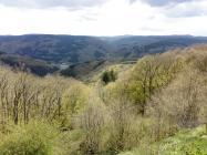 Blick vom Steinerberg hinunter nach Ahrbrück