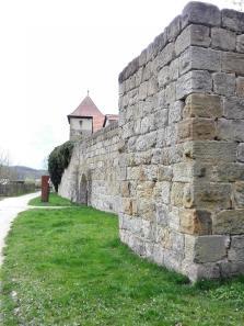 Stadtmauer am Rothenberger Stadttor