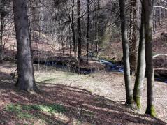 Von den Hängen ergießen sich zahlreiche Bäche in den Vesserbach und lassen diesen anschwellen