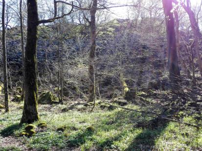 Reste einer von Menschen errichteten Terrassenwand an der Milseburg