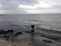 Schön flach ist der Strand hier