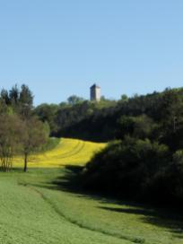 Der Turm der Lichtenburg überragt den Wald