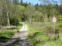 Furth im Wald