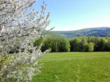 Blicke über die Landschaft beim Aufstieg in die Schwarzen Berge hinter Oberbach