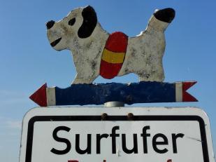 Am Altmühlsee wird viel gesurft