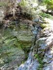 Gesteinsaufschlüsse im Wald