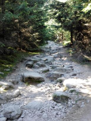 Der Wanderweg ist mit großen Steinen übersät