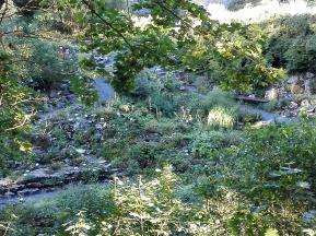 Blick vom Wall in den Botanischen Garten