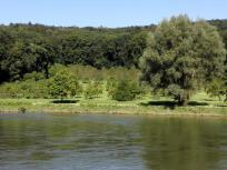 Die Wipfelsfurt, eine kreisrunde Flachstelle am Ufer. Vermutlich das Ergebnis eines Meteoriteneinschlags beim Ries-Ereignis vor 15 Millionen Jahren.