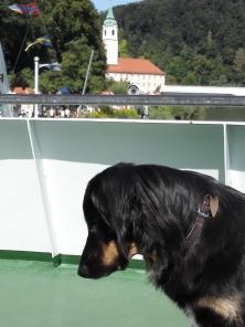 Doxi ist mit an Bord