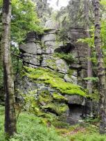An vielen Stellen ragen Granitblöcke aus dem Waldboden