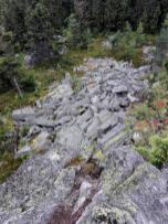 Abgebrochenes Granitgestein unterhalb des Saubadfelsens