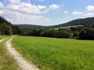Auf dem Donautalwanderweg