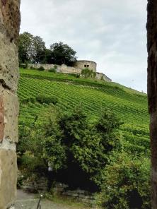 Bick von der Kirchenmauer hinauf zur Burg