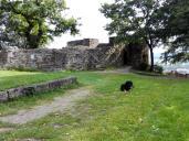 Von der Burg sind nur noch kleine Teile als Ruine erhalten