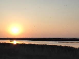 Sonnenuntergang über dem nördlichen See