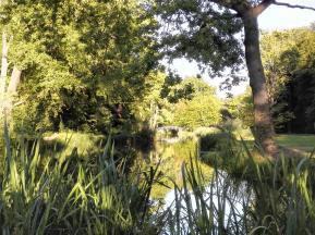 Wasserläufe durchziehen den Schlosspark