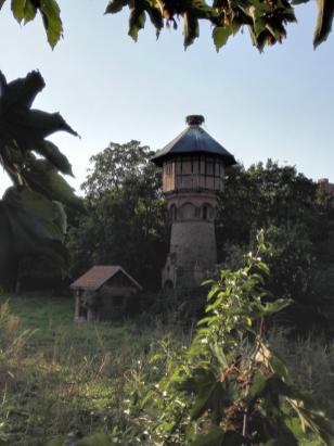 Storchennest auf dem alten Wasserturm des Ortes