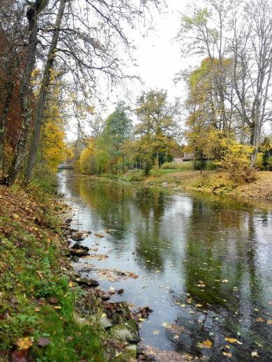 Am Ufer der Brigach