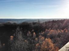 Blick vom Aussichtsturm Richtung Westen