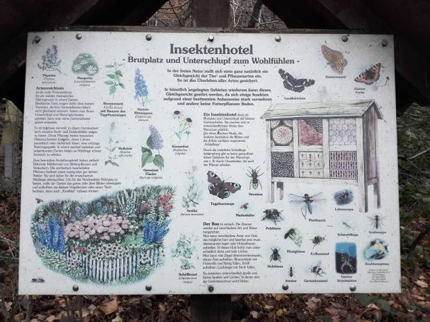 Infotafel an einem Insektenhotel entlang des Wanderweges