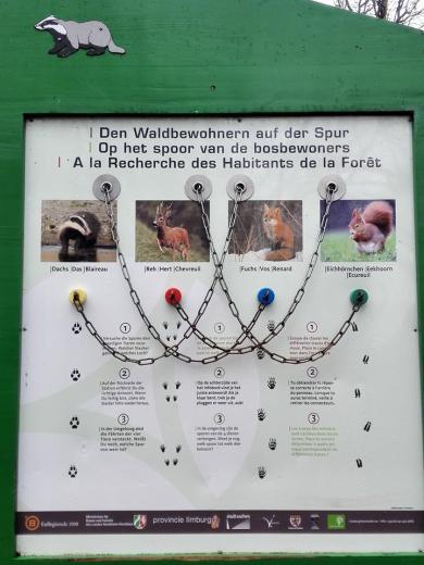 Die Infotafeln im Wald sind dreisprachig gehalten