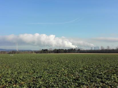 Zwei Schwäne auf einem Feld. Im Hintergrund die Braunkohlen-Kraftwerke Frimmersdorf und Neurath.