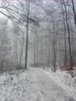 Der Gipfelbereich liegt in feuchtkaltem Nebel