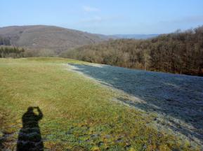 Die Sonne vertreibt den Frost auf den Wiesen