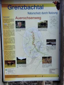 Auf dem Auerochsenweg im Grenzbachtal