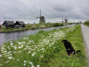 Eine Woche im Süden der Niederlande