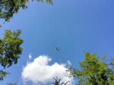 Im Fünfzigsekundentakt: Flugzeuge über uns