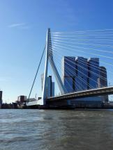 Der Erasmusbrücke, eines der Wahrzeichen von Rotterdam