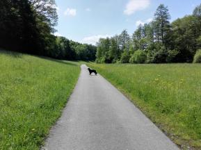 Auf dem Grünkern-Radweg im Kessachtal