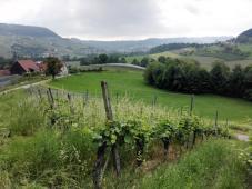 Am Morgen ist es glücklicherweise noch bewölkt. Blick in das Ohrntal Richtung Untersteinbach.