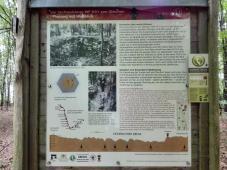 Infotafel am römischen Sechseckturm im Mainhardter Wald