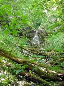 Ein Zufluss zur Bühler stürzt ins Tal
