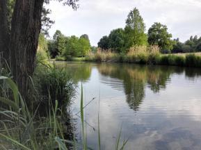Ein Park für Jung und Alt