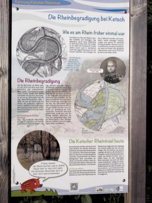 Infotafel zur Rheinbegradigung durch Tulla ab 1817