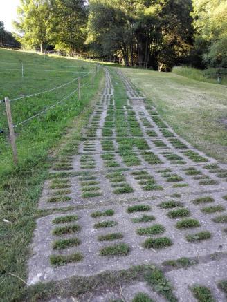 Der ehemalige Kolonnenweg der NVA-Grenztruppen unterhalb der Burgruine Hanstein
