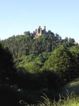 Blick aus der Ferne auf die Burgruine Hanstein